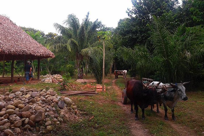 porongo-orilla-ecositio-bolivia-quienes-somos-4